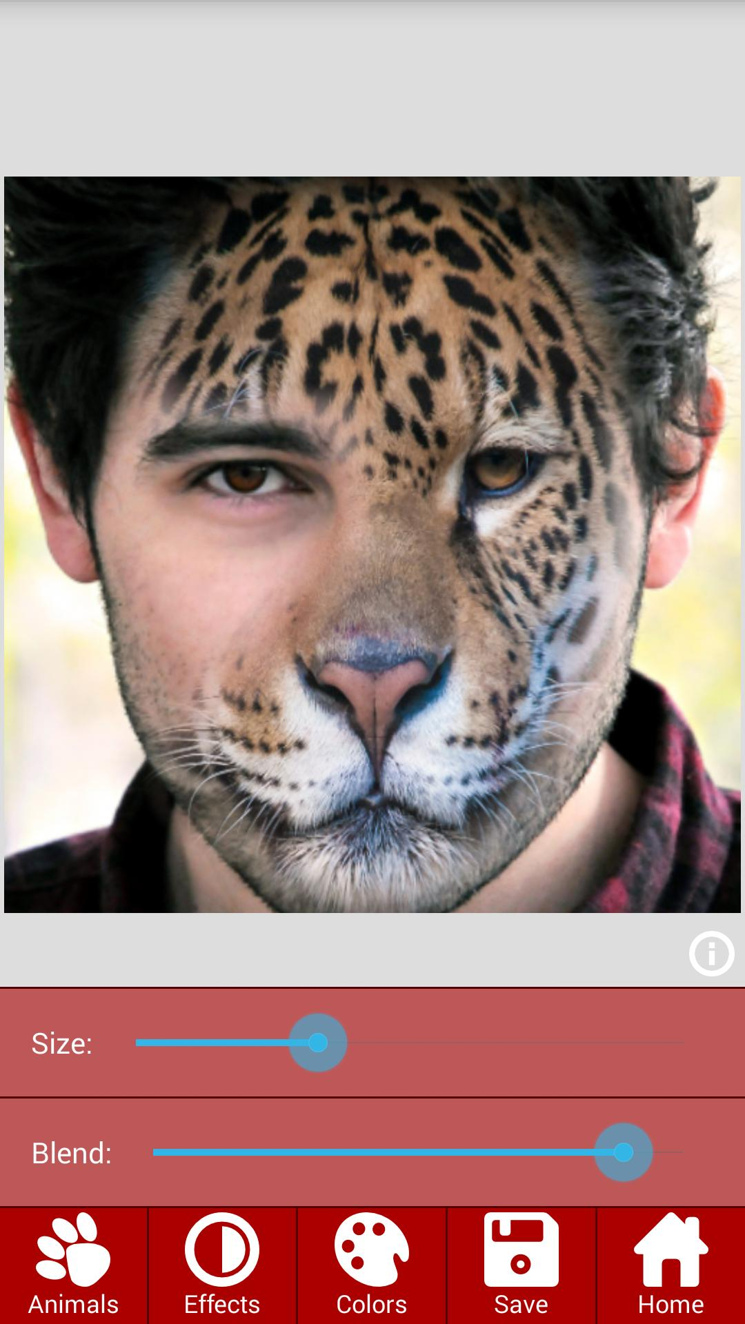 Animal Faces – Face Morphing app